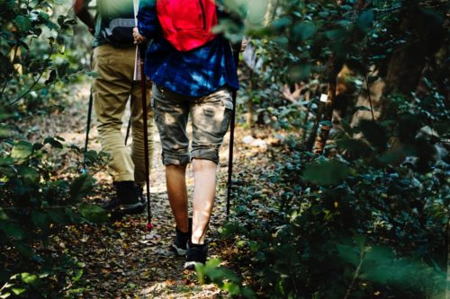 2 persons with backpacks hiking through forest
