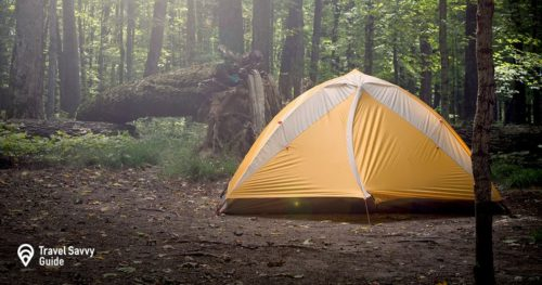 Yellow camping tent in a forest