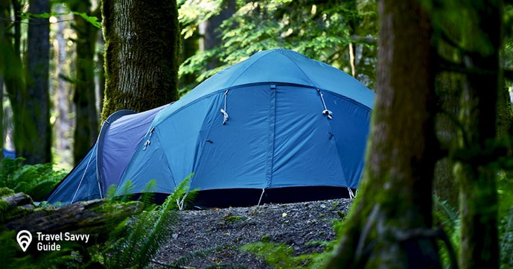 Tent camping in forest