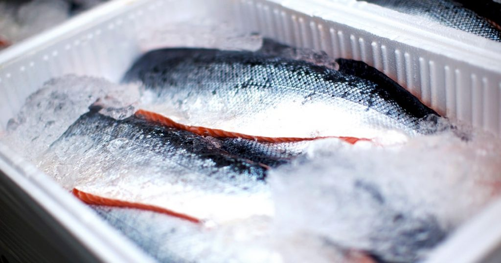 whole salmons lying on ice transportation