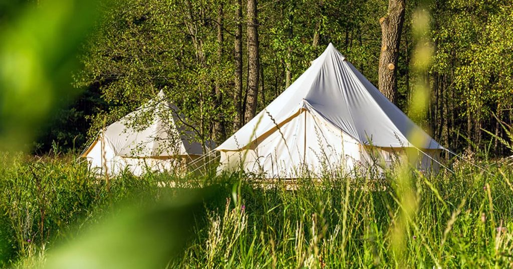 Two white bell tents outdoors at forest landscape