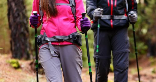 hiking-hikers-walking-forest-poles-on
