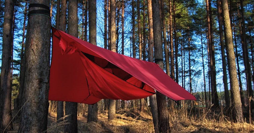 Pine trees and red hammock with tent in spring wood