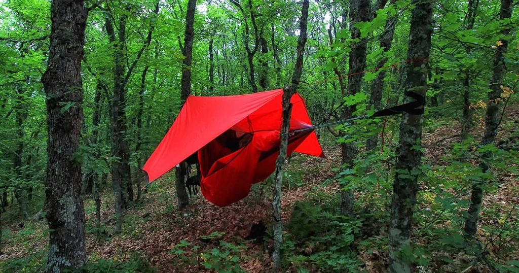 trees and red hammock with tent in summer forest
