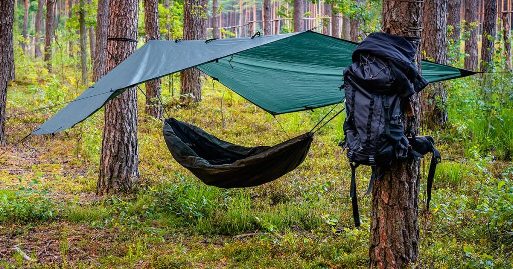Tree hammock tent hanging out in the wild forest on a summer day